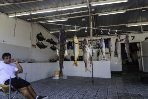 Rosario Fische aus dem Rio Paraná