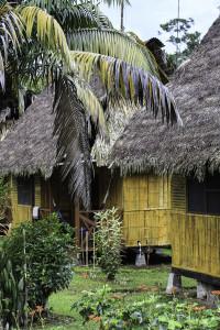 Ecuador_Selva_13