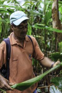 Ecuador_Selva_22