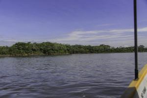 Ecuador_Selva_4