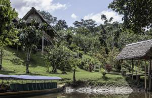 Ecuador_Selva_6