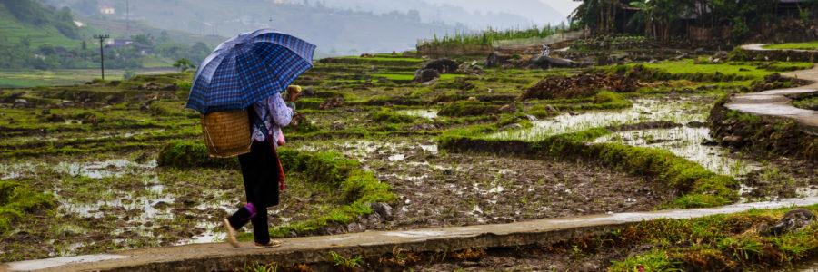 Vietnam Norden