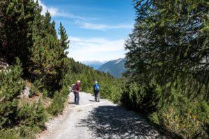 Kurt und Willi hinten die Ötztaler Alpen