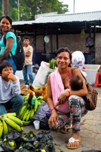 Ecuador Selva 004